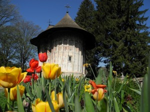 Romania budget tours – Discover Romania on a budget!